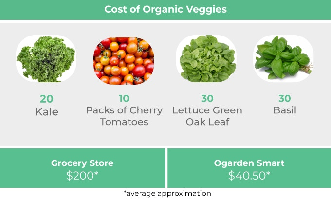 The image shows the differences in cost between buying vegetables from the store and growing vegetables with OGarden Smart. Image via OGarden